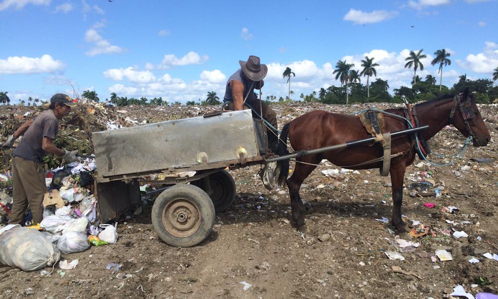 La basura de Campo Florido todavía se recoge en carretones de caballo (Foto: Elaine Díaz)