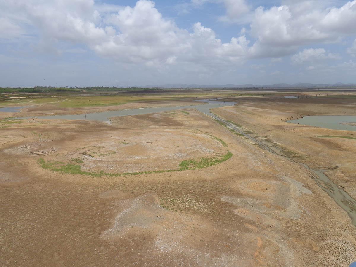 Efectos de la sequía en embalses dedicados al cultivo de arroz en Pinar del Río (Foto: Periodismo de Barrio)