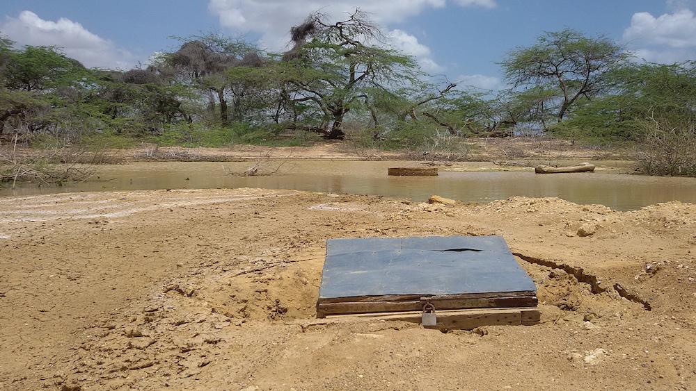 Una de las casimbas, en el jagüey (Foto: Mónica Baró)