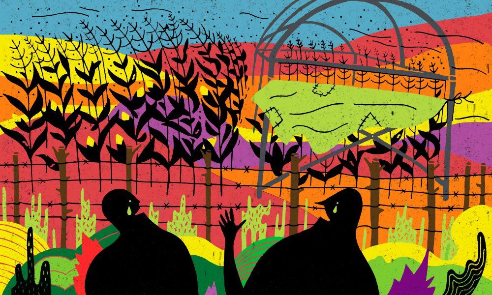 Ilustración: Miguel Alejandro Castro