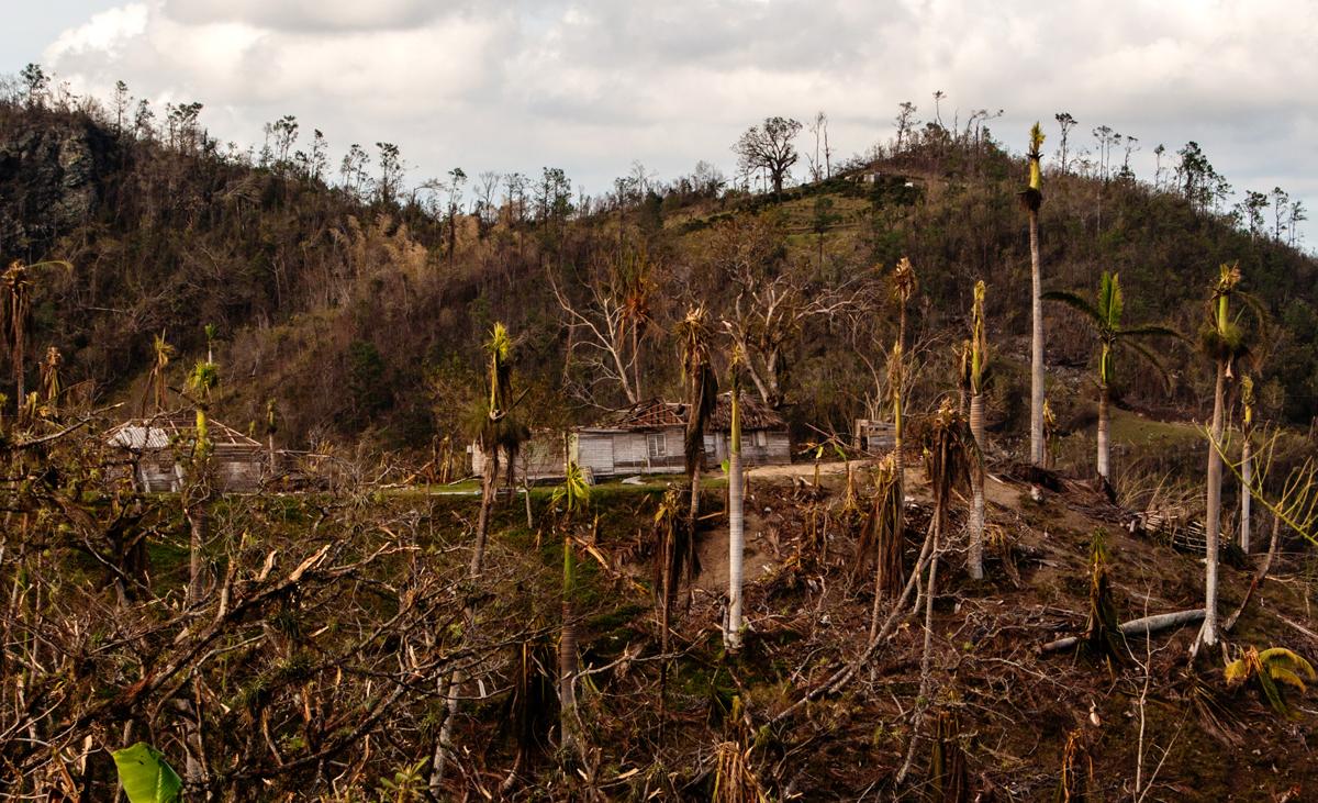 En las montañas que atraviesa La Farola los vientos dañaron casa y paisaje por igual (Foto: Julio Batista)