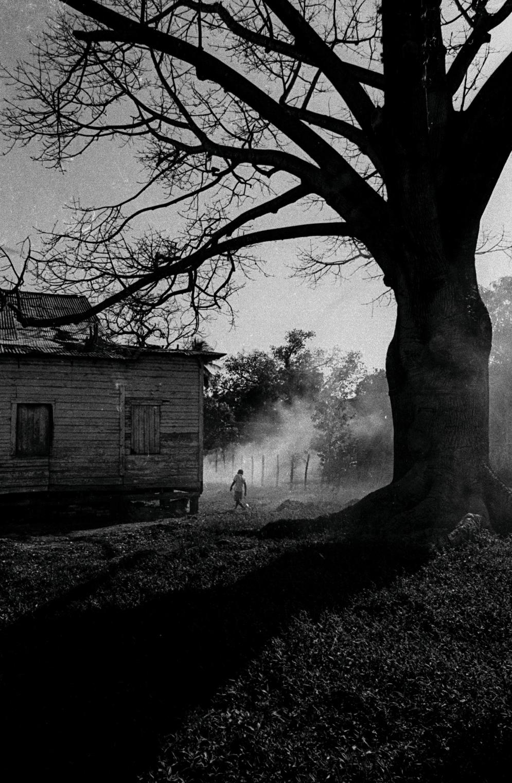 Este sitio siempre me pareció Nueva Orleans. Con casa de pilotes y comunidad de niños que se pierden en el humo. Las casas, como en Nueva Orleans, están cerca de la costa y, a veces, se hunden. (Foto: Alejandro Ramírez Anderson)
