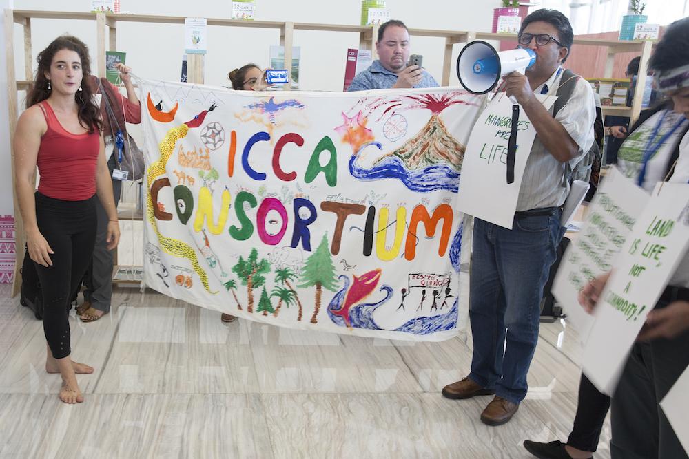 """Los Pueblos Indígenas participaron en un """"evento flash"""" durante la COP 13 (Foto: IISD)"""