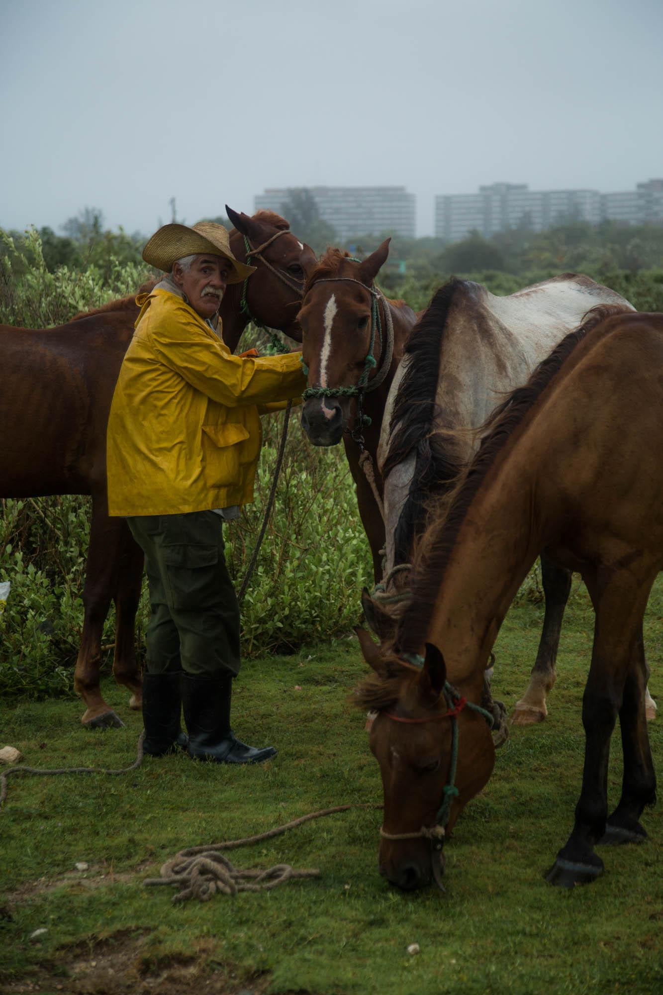 Un campesino deja a sus caballos comer y refrescarse antes de resguardarlos (Foto: Jorge Ricardo)