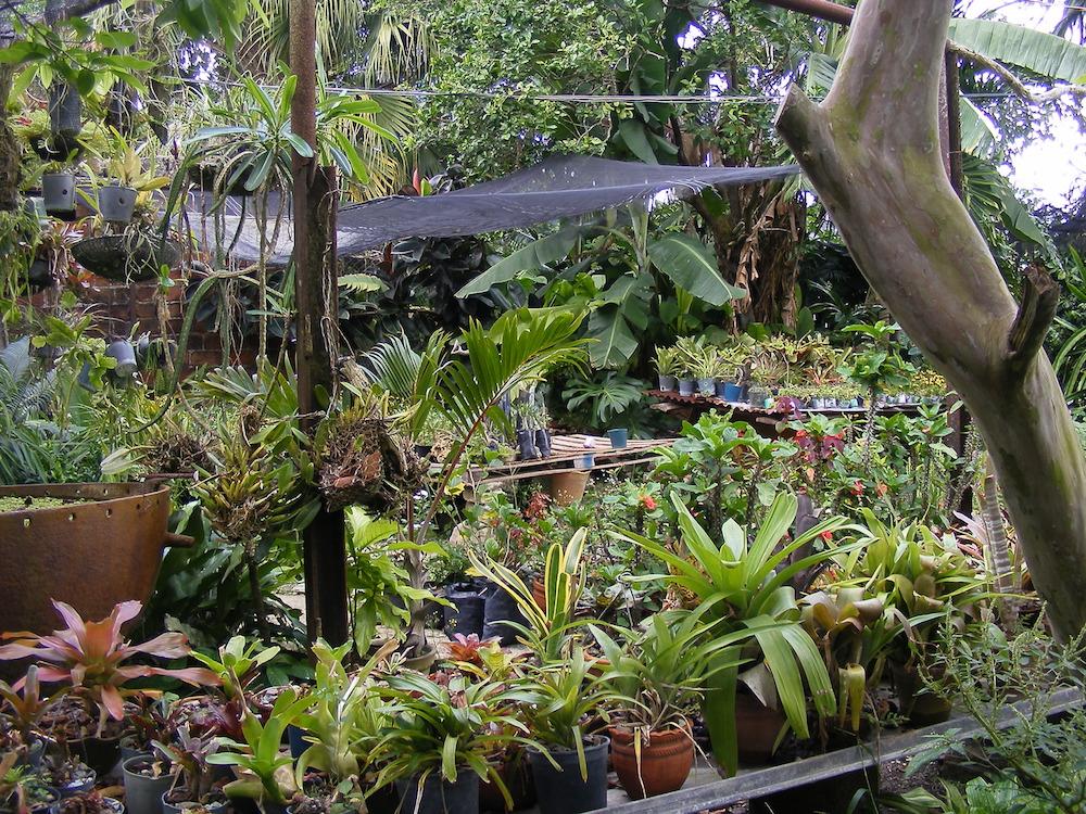 El patio radica en el km 1 de la carretera a San Juan de los Yeras, en Ranchuelo
