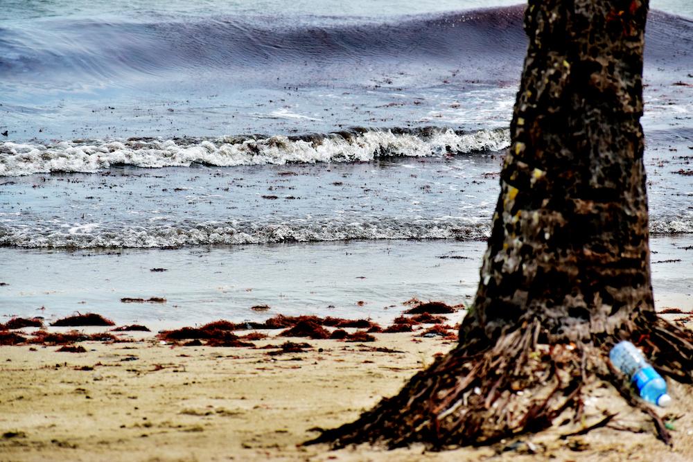 """La estela de petróleo recaló en la playa de Los Pinitos, nombrada ahora ofcialmente como """"El Judío"""""""