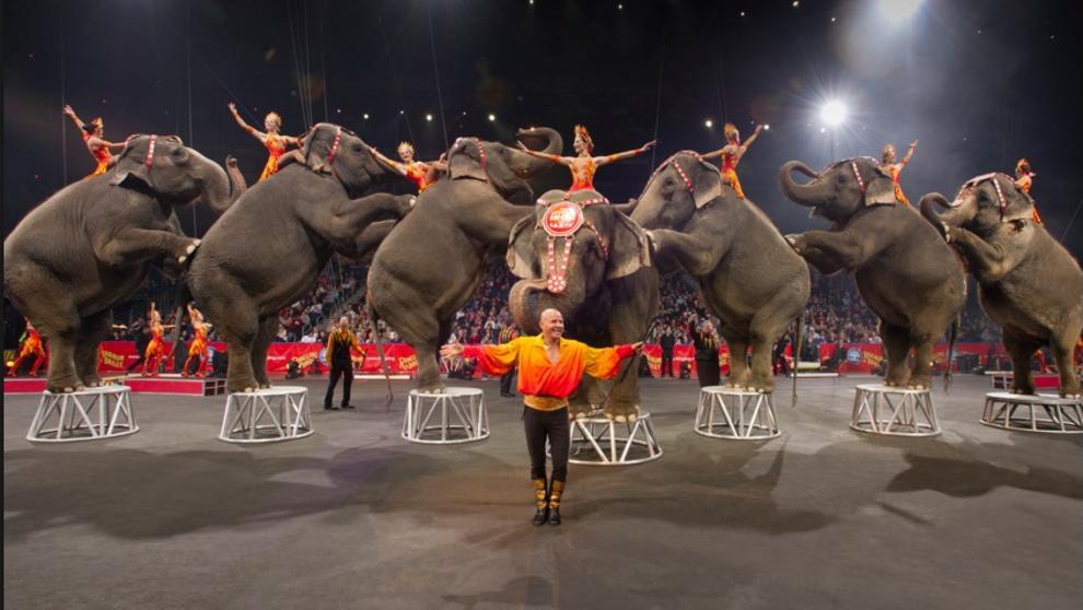 Nueva York prohíbe los animales salvajes en espectáculos de circo (Foto: La Vanguardia)