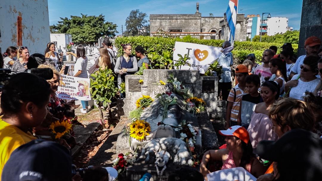 Desde hace años, esta caminata contra el maltrato animal se realiza en abril, en honor a Jeannette Ryder, una filántropa estadounidense cuyo perro está enterrado en un nicho a sus pies (Foto: Ismario Rodríguez).