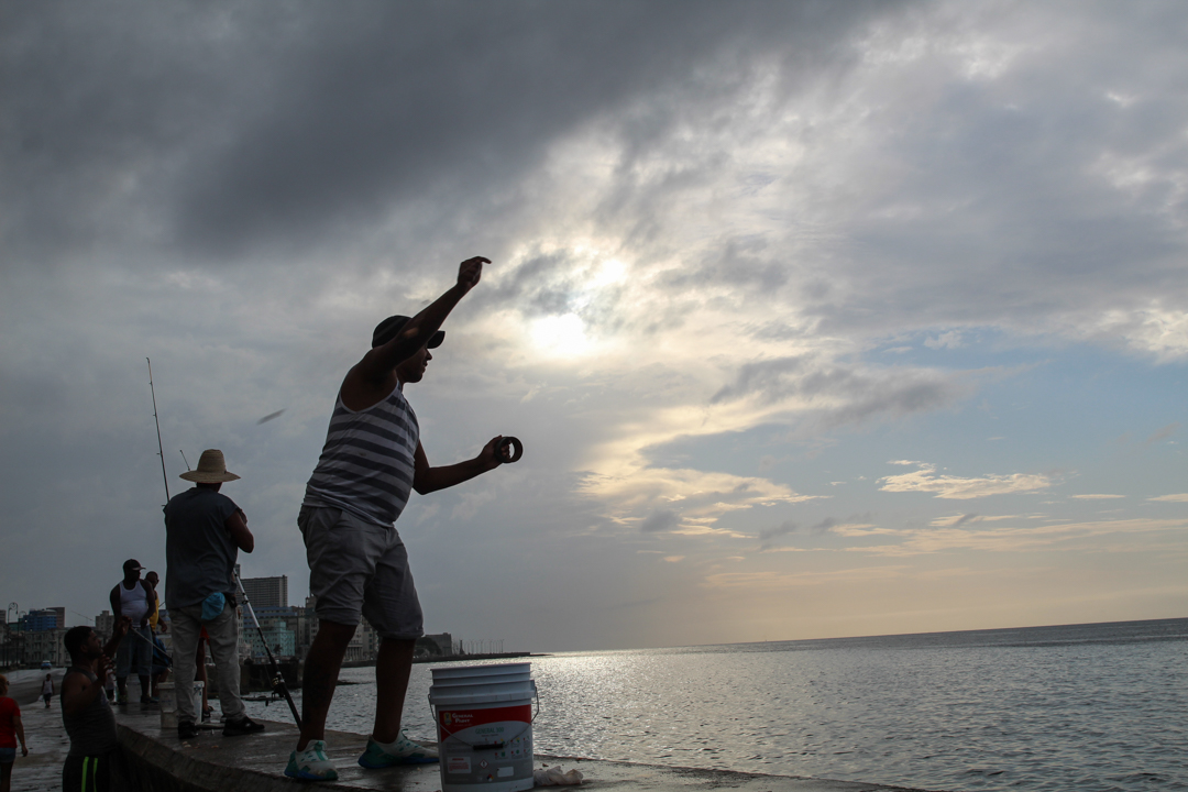 En 1989, el consumo de pescado per cápita en Cuba era de 16 kilogramos al año.