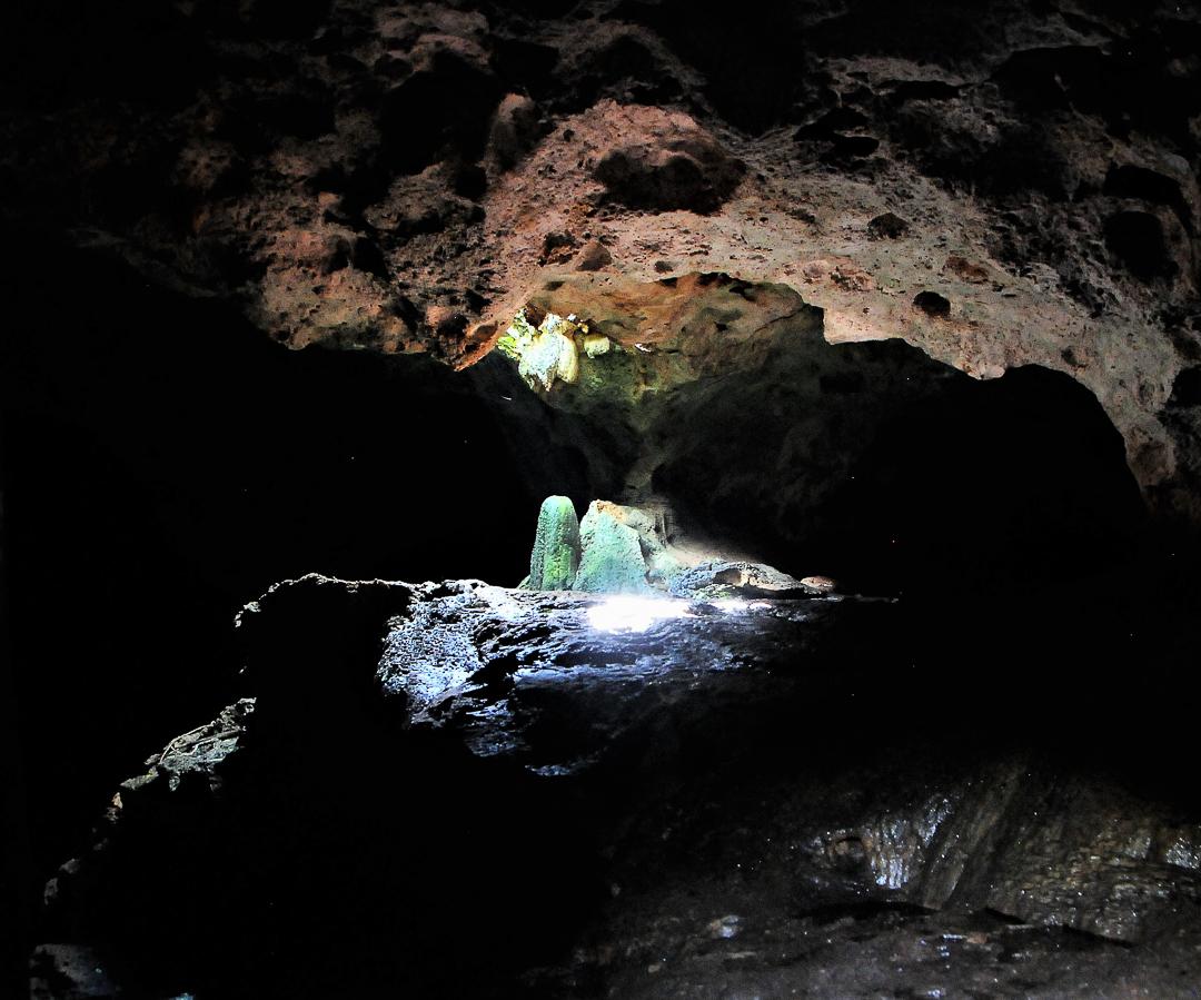 Salida Este en cueva La Barca, Parque Nacional Guanahacabibes. Foto tomada durante una expedición de monitoreo al Parque Nacional Guanahacabibes. Agradecimientos a EDGE Fellows program, ZSL y la Fundación Segré (Foto: Jose Manuel de la Cruz Mora).