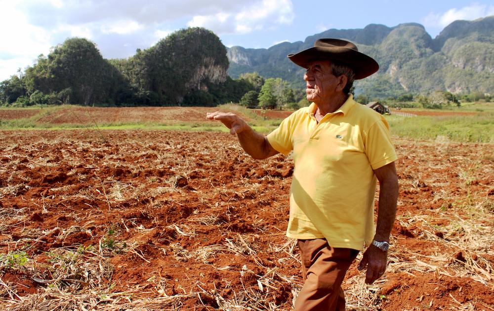 Luis Morales no conoce otra profesión que la de ser campesino (Foto: Alba León Infante)