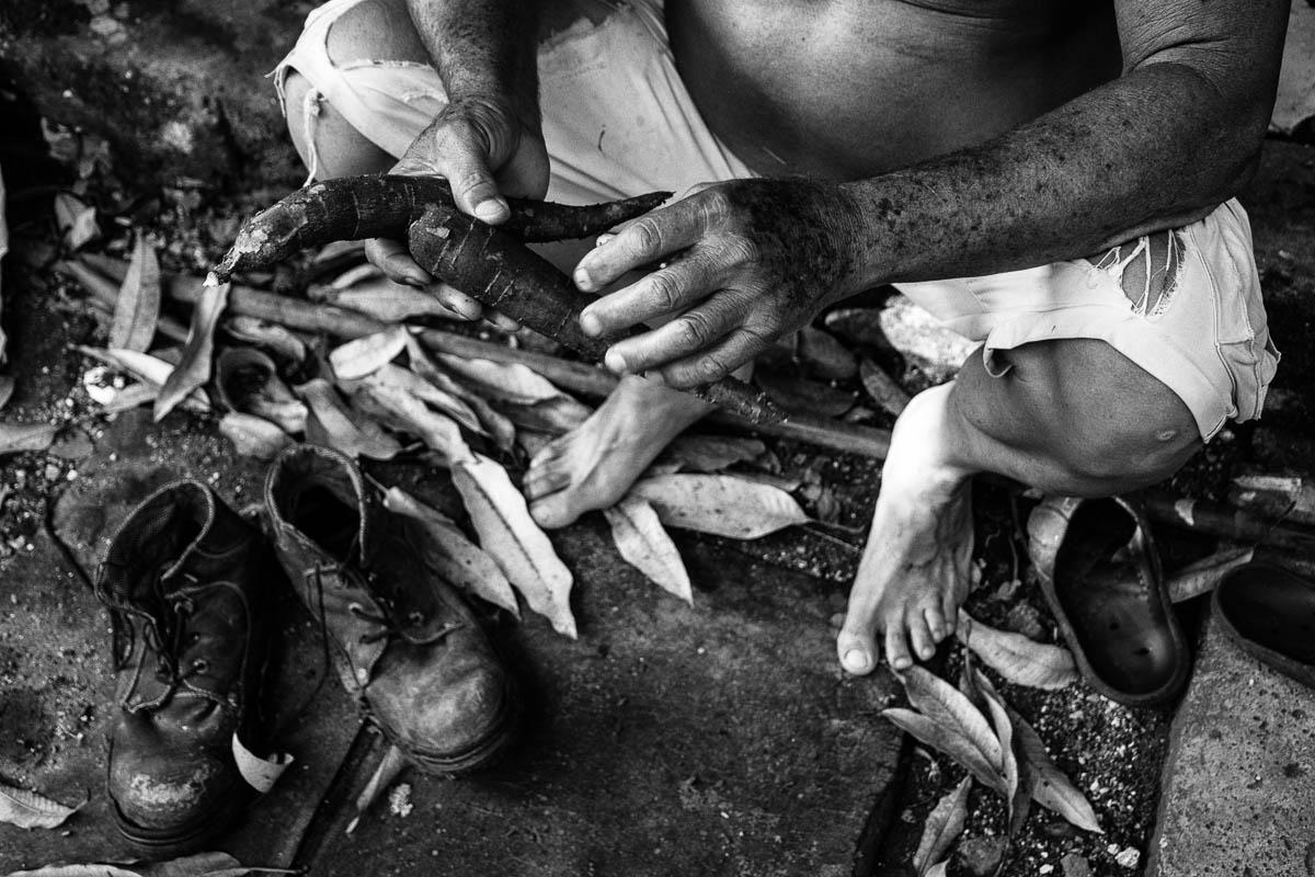 Había sacado algunas yucas de los quince pequeños surcos al fondo de su casa. Todavía no estaban óptimas, pero es su vianda preferida. Quería perfeccionar una vieja receta que le recordó su padre, y que comió mucho durante el llamado Periodo Especial de los años 90: el casabe (Foto: Sadiel Mederos Bermúdez).
