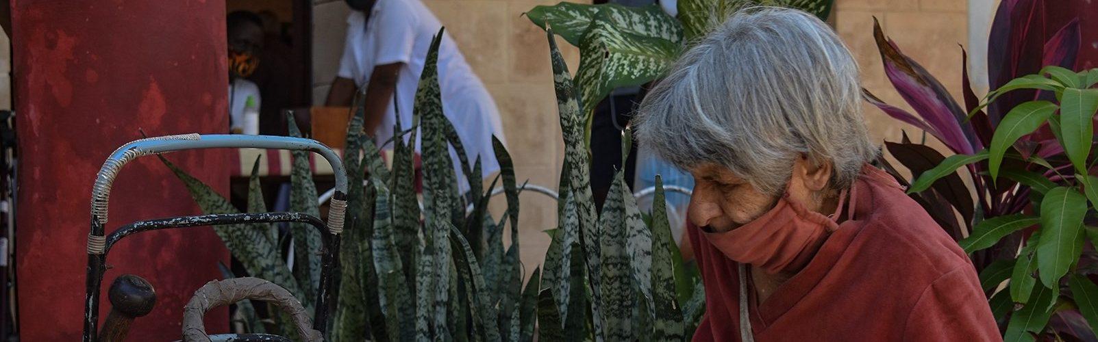 Foto: Thalía Alfonso Gómez